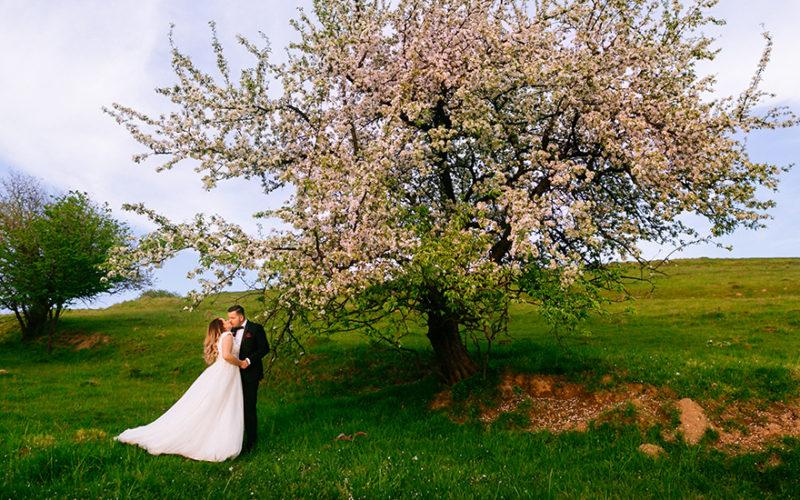 Andrada si Marius fotografii nunta Suceava